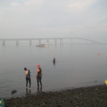 Why We Swim Across Narragansett Bay