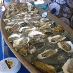 Oysters from Salt Water Farms,  ready to be eaten.