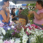 Saturdays at the Pawtuxet Farmers' Market
