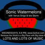 Payday Reform and Policy Change: A Recent Conversation on Sonic Watermelons on BSR