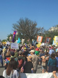 democracy spring march2