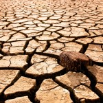 The Politics of Drought