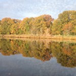 Autumn foliage is reflected in the waters of Greenwich Cove. (Photo by Bob Plain)