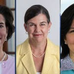2014 election could be a women's wave