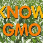 Learn more about GMO's on Thursday in Providence