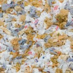 Caution: Plastic Bag Bans Will Not Make You Sick