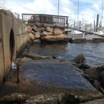 Stormwater runoff, filled with non-point source pollution, is spilling into Greenwich Bay.