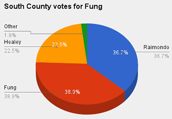 south county votes fung